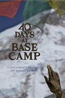 在大本营的40天
