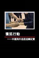 凤凰大视野:猎狐行动——中国海外追逃追赃纪实