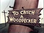 To Catch a Woodpecker