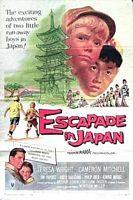 日本逃亡记