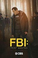 聯邦調查局:通緝要犯 第二季