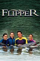 海豚的故事 第一季