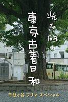 光石研的东京古着日和特别篇 千万不要对一见钟情的东西下手!