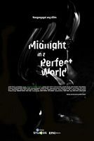午夜中的完美世界